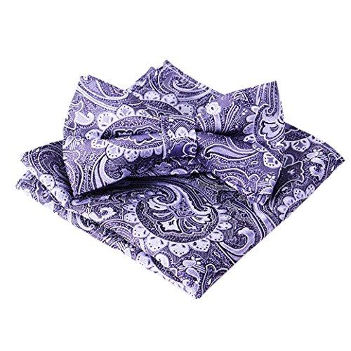 Panegy Ensemble Set de 2pcs Coffret Noeud papillon et Pochette carré Homme Costume Chemises Réglable pour Soirée/Business/Mariage/Cérémonie Cadeau de