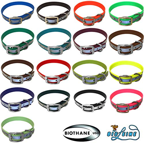 bio-leine Hundehalsband personalisiert aus Biothane - mit Name und Telefonnummer - Halsband für kleine und große Hunde, in vielen Größen und Farben