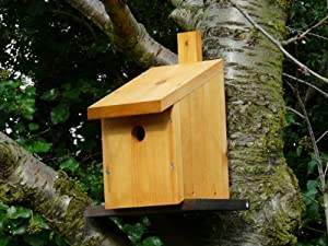 Nest box multi species