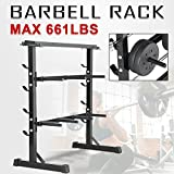 Popamazing 3 Tier Weight Plate & Dumbbell Rack Barbell Storage Stand Holder Home Gym Workout Fitness Black
