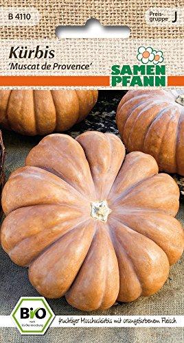 Samen Pfann B4110 Kürbis Muscat de Provence (Bio-Kürbissamen)