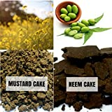 Mustard Cake and Neem Cake - Free Shipping