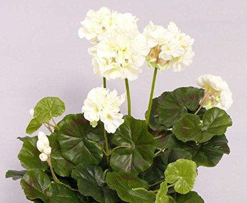 Geranie, Kunstblume weiß-creme, Höhe ca. 30cm, ohne Topf – künstliche Geranien