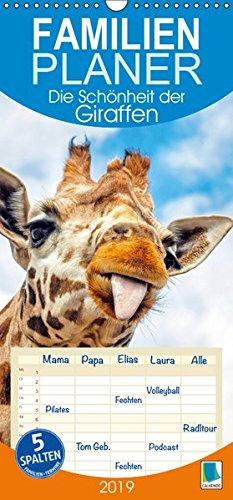 Die Schönheit der Giraffen (Wandkalender 2019 , 21 cm x 45 cm, hoch): Giraffen, die afrikanischen Tiere mit Weitblick, Familienplaner 5 Spalten (Familienplaner, 14 Seiten ) (CALVENDO Tiere) - Masai Giraffe