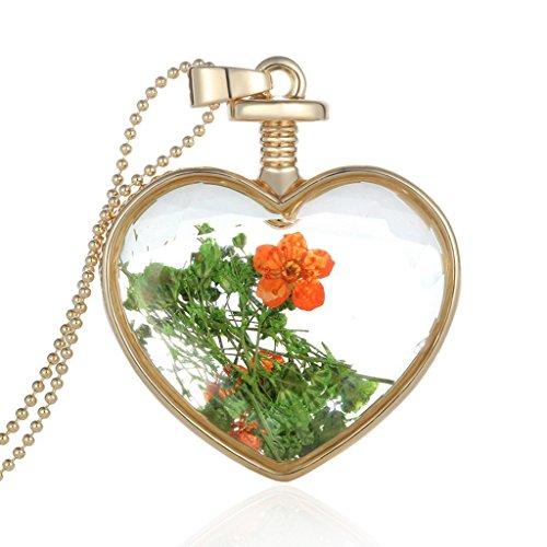 Jiayiqi M'oubliez Pas Vrai Sec Fleur Coeur Verre Bouteille Pendentif Collier Cadeau No1