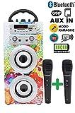 DYNASONIC Altoparlante Cassa Bluetooth con karaoke 2 microfoni radio e lettore USB SD (colore 025-1)