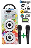 DYNASONIC Altavoz Bluetooth portatiles con Karaoke 025-1 10W, 2 Micrófonos incluidos, Radio, Lector...