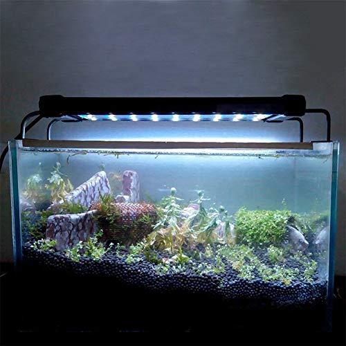 Aquariums & Tanks Pet Supplies Gentle Aquarium Fish Tank Decoration For Your Table Clear Round Shape Hanging Glass Cn