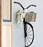 #7: Karigaari India Wrought Iron Cycle Wall Hanging for Books, Decoratives
