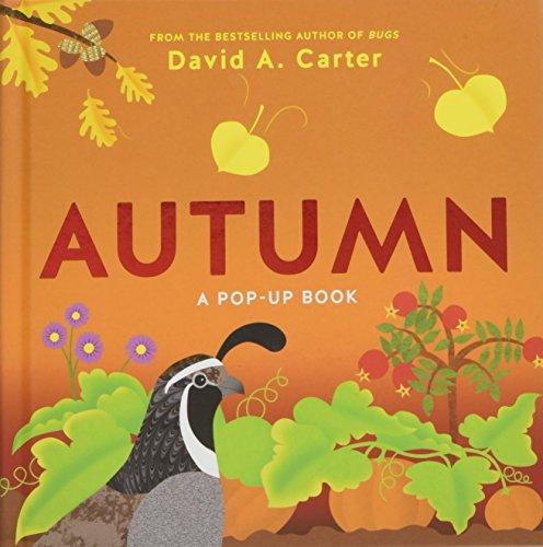 Autumn (Seasons Pop-up) por David Carter