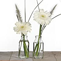 Suchergebnis Auf Amazon De Fur Tischdeko Vasen Wohnaccessoires