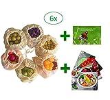 Cushy Family 6er Gemüsenetze aus Bio-Baumwolle für plastikfreien Einkauf - mit Gemüsebeutel nachhaltig Leben - INKL. 4 Rohkost-Rezepte & Guide Gesundheit