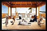 Yoga Cats - Hut Framed Poster - 64x94.5cm