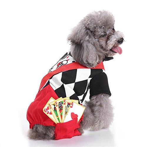 PET Magier Set Pet Christmas Wonderful Lustige Drehbühne Party Performance Charakter Kleidung Costume Pet Kleidung für kleine Hunde (Farbe : Rot, größe : M)