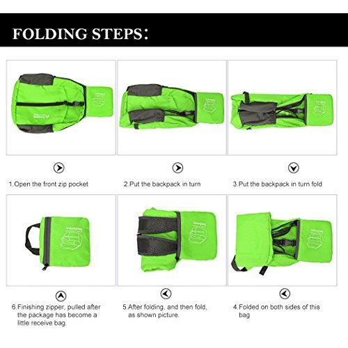 ABLE Unisex 25-35 Liter Faltbarer Rucksack Leichter Tagesrucksack, für Outdoor Wandern Reisen Grün