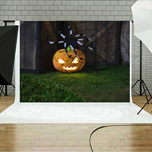 3D-Studio-Hintergrund Tuch,TPulling Halloween Backdrops Kürbis Vinyl 5 x 3FT Laterne Hintergrund Fotografie Studio 100% Musselin Hintergrund Stoff Fotografie-Hintergrund (A)