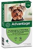 Advantage 40 für Hunde Lösung 4 stk