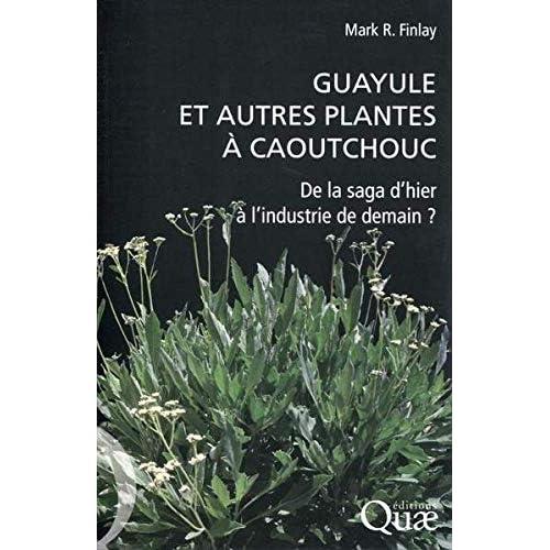 Guayule et autres plantes à caoutchouc: De la saga d'hier à l'industrie de demain ?