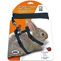 ICA DA1028 Set de Arnés y Correa para Conejos, Negro