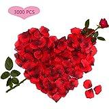 3000pcs Petali di Rosa, Petali di Rosa Rossa in Seta per Decorazioni di San Valentino, Proposta di Matrimonio