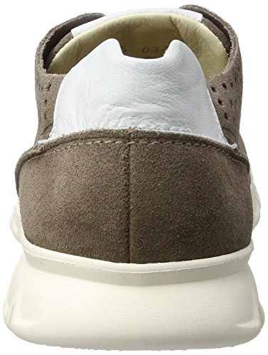 Lloyd Aldo, Sneakers basses homme Beige (TAUPE/WHITE)