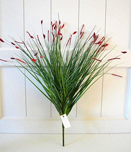 Gras, Pflanzen (Gräser mit Blüten Gras Pflanze Deko Dekoblume künstlich Kunstpflanze rot ca. 45cm Tischdeko Vase Pflanze Blume Fensterdeko)