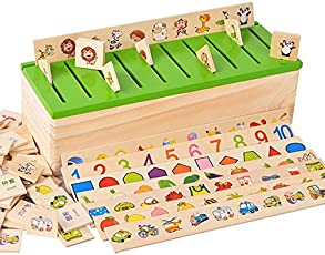 Trinkets & More Knowledge Classification Box, +3 - Set of 80 Pieces