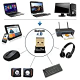 EkoBuy Bluetooth 4.0 USB Dongle Adapter for PC with Gold Plated USB, Bluetooth Transmitter and Receiver For Windows 10 / 8.1 / 8 / 7 / Vista - Plug and Play for Win 7 and above from EkoBuy