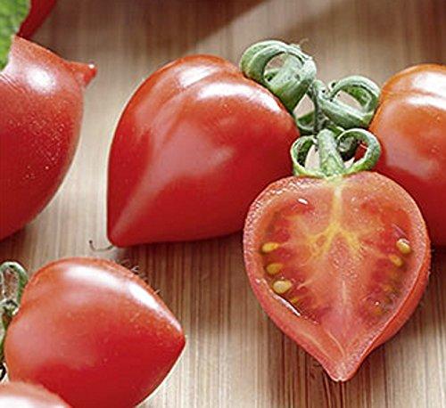 Tomaten Herztomate Heartbreaker Vita Samen