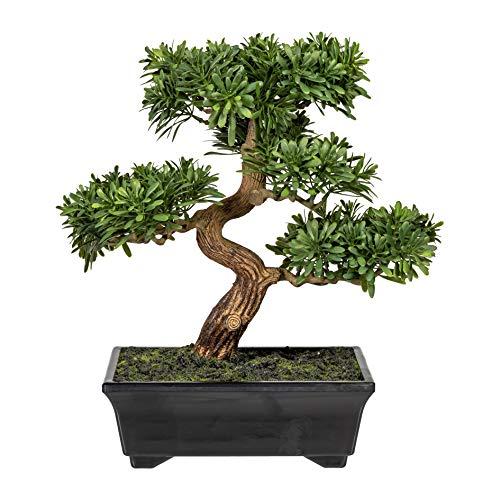 Homefinity Künstlicher Bonsai Podocarpus Baum ca. 30 cm in schwarzer Kunststoffschale