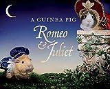 A Guinea