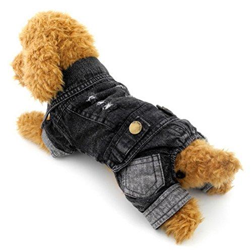 zunea Kleiner Hund Kleidung für weiblich männlich schwarz vierbeinigen Denim Jumpsuits Hose Hundemantel Dick waschbar