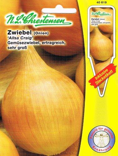 Gemüsezwiebel 'Ailsa Craig' Zwiebeln ertragreich, sehr groß ( mit Stecketikett)