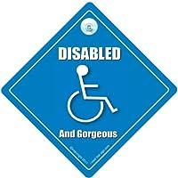 Disabili e bellissime per finestrino auto cartello, Baby on Board stile, disabili simbolo, schiena di dotazioni di sicurezza cartello