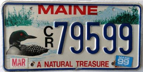USA Nummernschild MAINE ~ US Kennzeichen Vogel Motiv ~ Blechschild