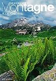 Alpi Orobie. Con cartina