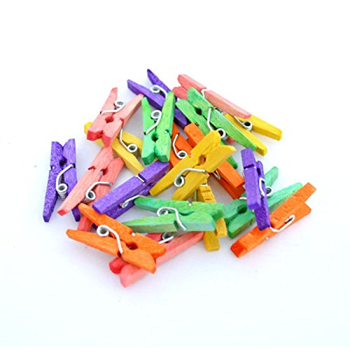 Ziggle Colored Wooden Pegs Clothes Pins Clothespins bamboo clothespin craft (Pack of 12)