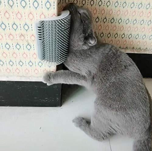 Hpybest Massagegerät für Katzen, mit Katzenminze