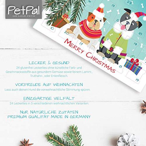 Zoom IMG-2 petp l advent calendar