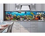 Küchenrückwand Folie selbstklebend FISCHE IM OZEAN 260 x 60 cm | Klebefolie - Dekofolie - Spritzchutz für Küche | PREMIUM QUALITÄT
