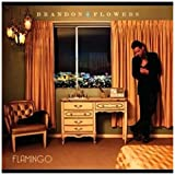 Songtexte von Brandon Flowers - Flamingo