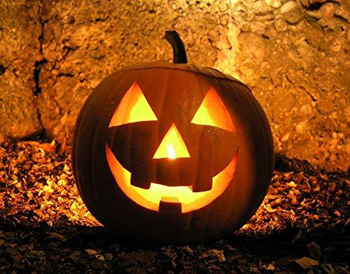Zucca di halloween nr.20 semi