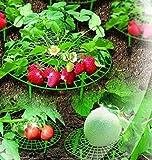 UPP Erdbeer & Frucht Reifer/Erdbeerstütze/Schneckenschutz/Gitterablage/Fruchthalter/Fruchtstütze (20)
