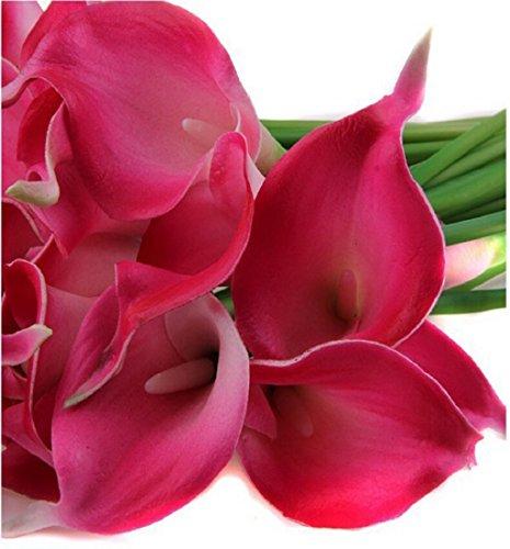 Preisvergleich Produktbild Tongshi 10pcs mini künstliche Callalilie Hochzeit Blumen Bouquet Calla-Lilien-Schaum Dekoration (Wassermelone rot)