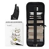 29 Stück Professionelle Skizze & Zeichnung Art Tool Kit mit Graphitstiften, Holzkohle Bleistifte, Papier löschbare Stift, Handwerk Messer-Lightwish (mit Sketchbook, Zipper Case)