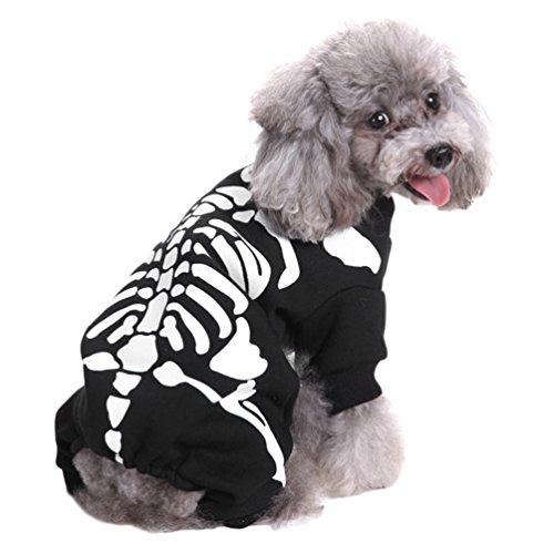 Yuncai Lustige Halloween Haustier Hund Kleidung Weihnachts-Clown Kürbis Spinne Hexe Verkleiden Sich Party Kostüm Cosplay für Katze Als Bild L