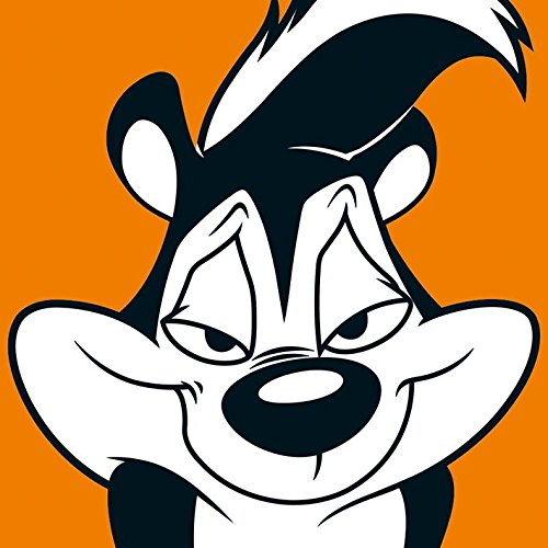 looney-tunes-pepe-le-pew-canvas-prints-multi-colour-40-x-40-cm