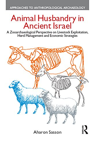 Animal Husbandry in Ancient Israel: A Zooarchaeological Perspective on Livestock Exploitation, Herd Management and Economic Strategies (Approaches to Anthropological Archaeology) (English Edition) (Für Element Herd)