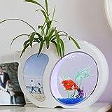 Mini Fish Tank Acquario Autopulente Fish Tank Bowl Conveniente Acrilico Desk Acquario Per L'ufficio Decorazione Della Casa Accessori Per Animali,White