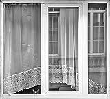 Kunstdruck/Poster: Susanne Stoop Kitten Window -